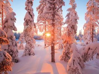 Зимнее солнце / Магазин маленьких радостей