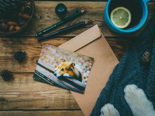 Подписывать открытку / Магазин маленьких радостей