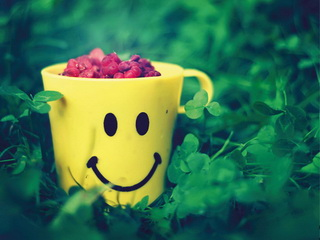 Mug with raspberry / Shop of little joys