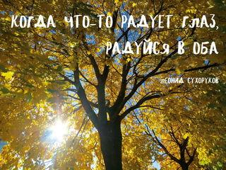 Солнечная осень / Магазин маленьких радостей