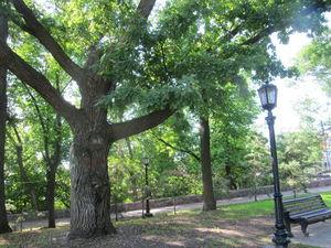 Парк имени Салавата Юлаева